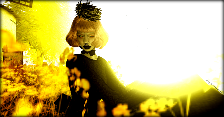 Mourning_In_Flowers